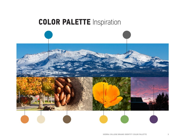 color-palette-presentation-3